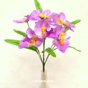 Орхидеи атласные