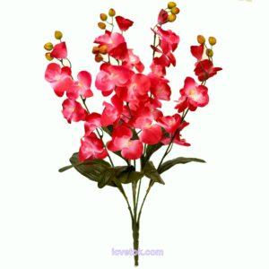 Орхидея высокая непресованная