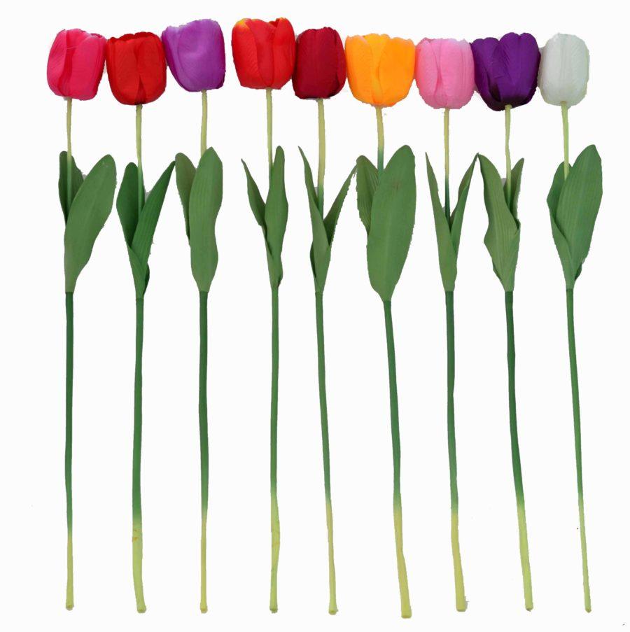 Тюльпаны высокие