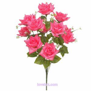Роза остроконечная высокая