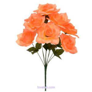 Роза остроконечная высокая 10