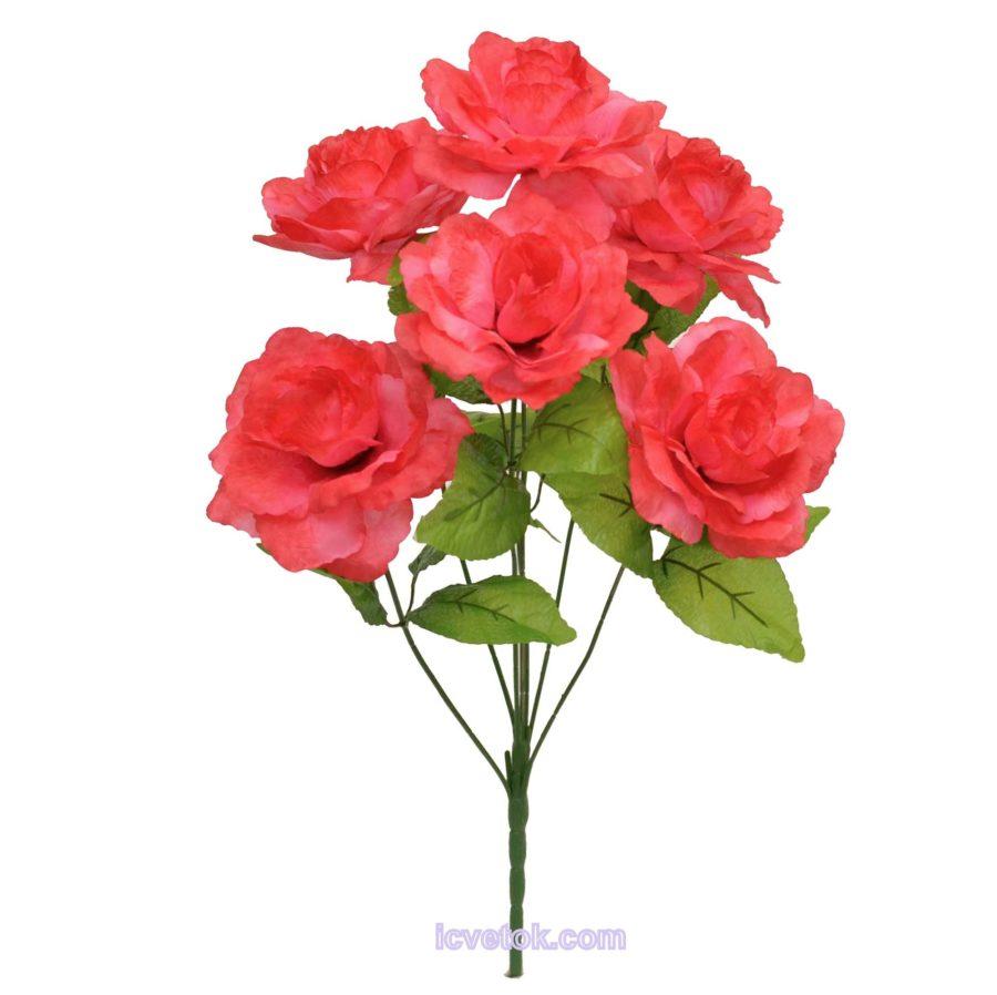 Роза высокая неатласная