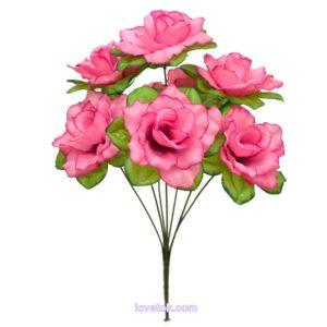Роза водяная круглая