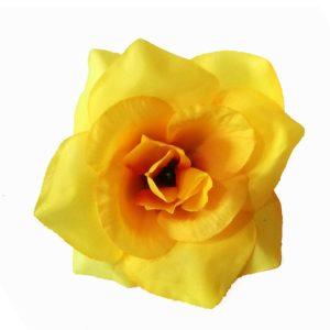 Роза маленькая