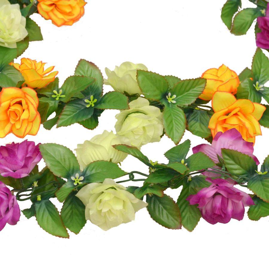 Цепочка розы остроконечной двухцветной