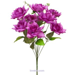 Роза неатласная остроконечная средняя